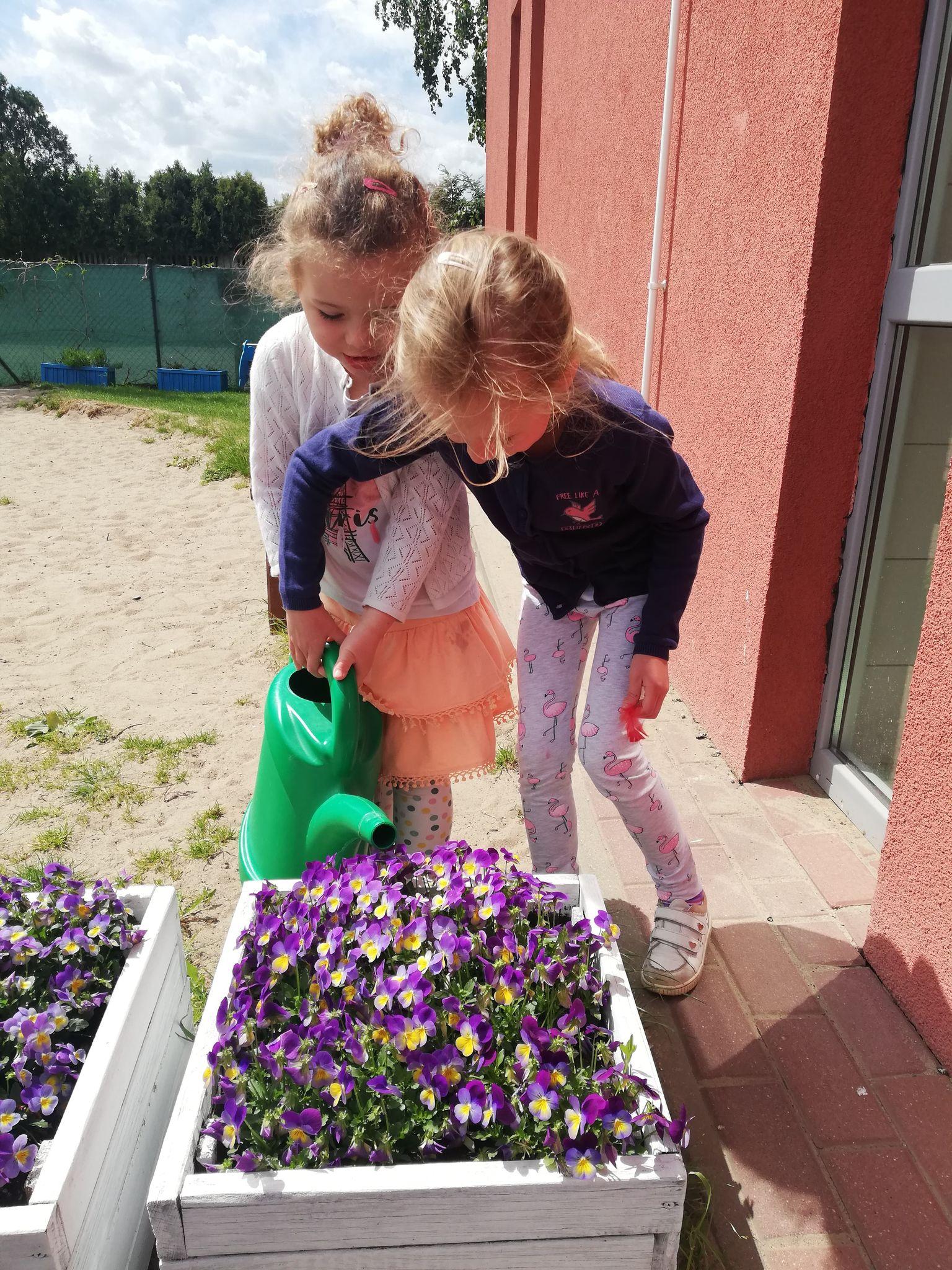 Plastusie – ogrodnicy